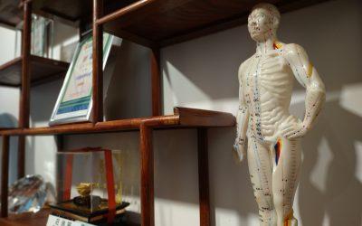 腧穴針感解剖結構的研究綜述(節錄2)